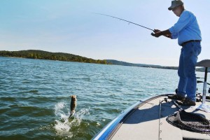Table Rock Fishing Guide